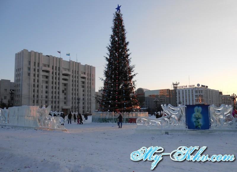 1-foto-novogodnyaya-elka-2014